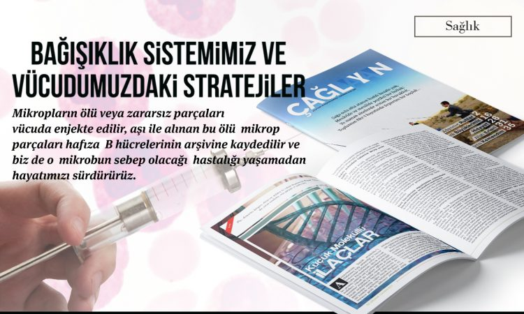 bagasiklik_sistemi